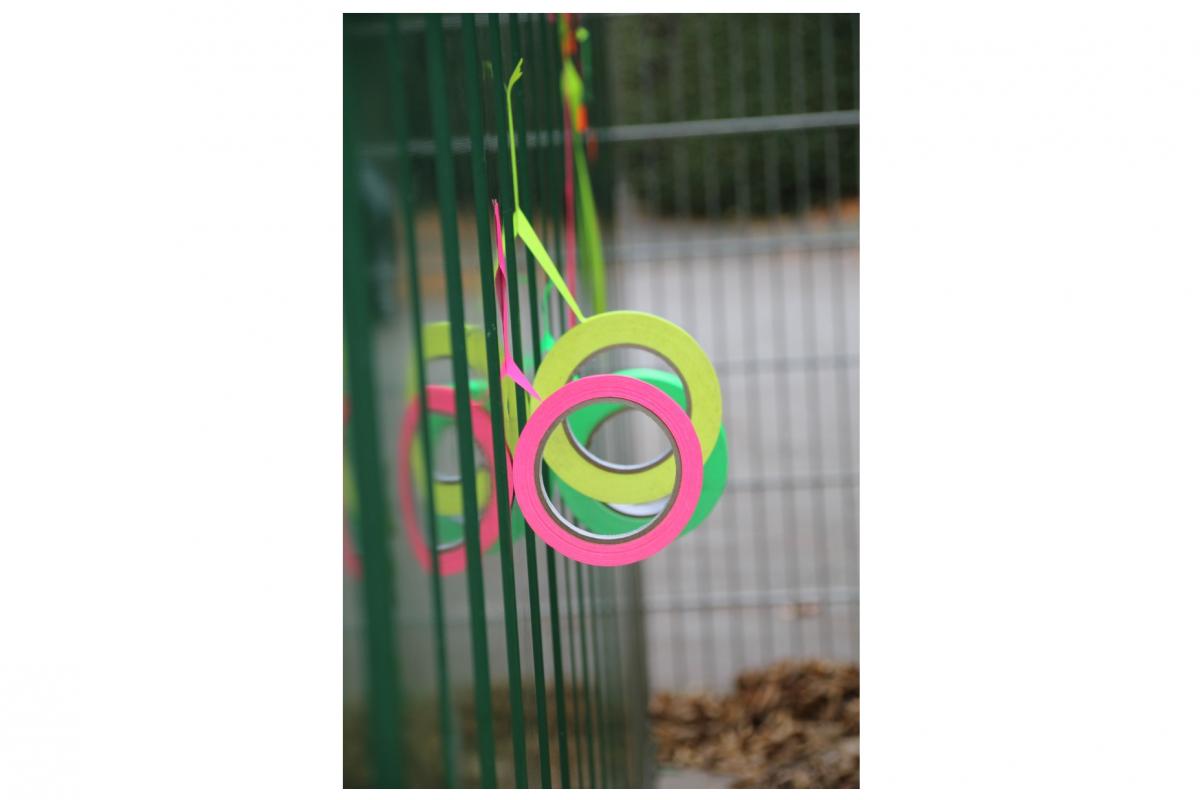 schulhof_0041.jpg