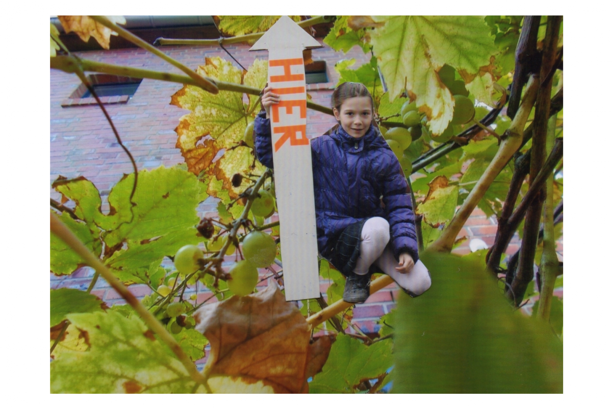 collage_scan007_a_1200px.jpg